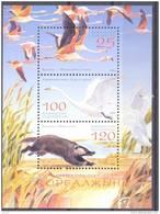 "2006. Kazakhstan, National Park  ""Kurgoldgino"", S/s, Mint/** - Kazakhstan"