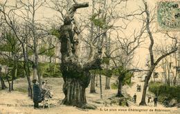 ARBRE(ROBINSON) ANE - Trees