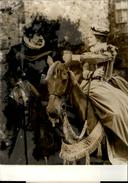 PHOTO - Photo De Presse - GLENDA JACKSON - TREVOR HOWARD - Actrice - Acteur - 1971 - Célébrités