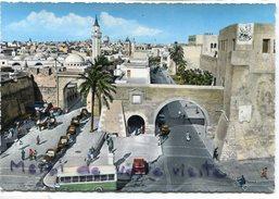 - TRIPOLI - Général  View, Véduta, Autocars, Cars, Animation, Grand Format, Non écrite, Peu Courante, TTBE, Scans. - Libye