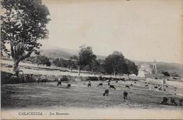 CPA Corse Corsica Non Circulé CALACUCCIA - Andere Gemeenten