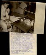 PHOTO - Photo De Presse - PARIS - Laiterie - Nouveaux Emballages En Carton - Berlingots - 1955 - TETRA LAIT - Objets