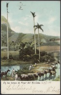 POS-669 CUBA POSTCARD. 1903. PINAR DEL RIO. LOMAS DE PINAR DEL RIO MOUNTAINS. - Cuba