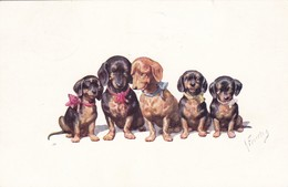 Dackel Teckel Dachshund  Chien  K.Feiertag  Cpa. Old Dog Postcard. BKWI. 706-2   1917 - Chiens