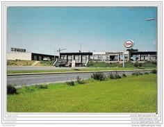 VEJLE (Danemark) - Hötel-Motel HEDEGAARDEN - Denemarken
