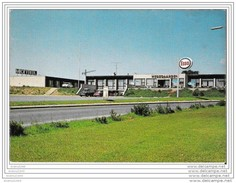 VEJLE (Danemark) - Hötel-Motel HEDEGAARDEN - Dänemark