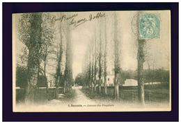Sannois - Coulon Précurseur 8 - Avenue Des Peupliers (plis) - Sannois