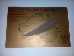 Australie - Carte Géographique De L'ile - A Gum Leaf From The Golden South - Véritable Feuille - Australie
