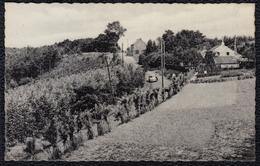 WESTOUTER RODENBERG - MONT ROUGE - Niet Courant - Heuvelland