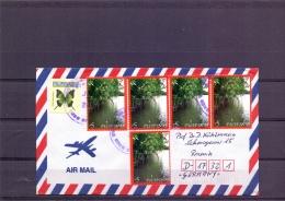 Pilipinas -   20/11/2006  (RM12353) - Arbres