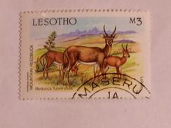 LESOTHO  1987  LOT# 4  ANIMAL - Lesotho (1966-...)