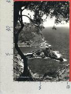 CARTOLINA VG ITALIA - PORTOVENERE (SP) - Poesia Del Mare - 10 X 15 - ANN. 1954 - La Spezia