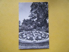 GENÈVE. L'Horloge Fleurie Du Jardin Anglais. - GE Ginevra