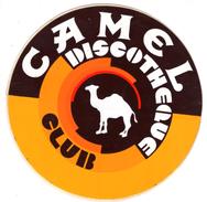 AUTOCOLLANT Sticker CAMEL CLUB DISCOTHEQUE - Stickers