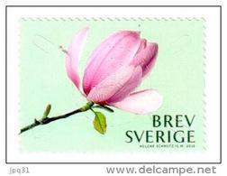 Magnolia Rose - 2015 ** - Suède