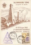 8520-2° CONVEGNO NAZIONALE FILATELISTI TEMATICI - SALSOMAGGIORE TERME 29-30 GIUGNO 1963-FG - Manifestazioni
