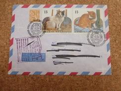 """Enveloppe Avec Cachet """"retour à L'envoyeur""""  - 1993 - Belgique - Domestic Cats"""