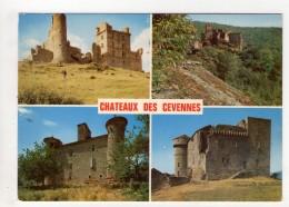 CP 10*15-YP83-CHATEAUX DES CEVENNES MULTIVUES - France