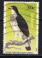 ZIMBABWE - 1984 - AQUILA AFRICANA - HIERAETUS SPILOGASTER - USATO - Zimbabwe (1980-...)