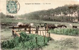 - LONGPRE-LES- AMIENS - Le Marais - France
