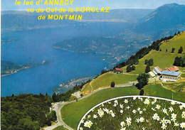 74 - LE LAC D'ANNECY Vu Du Col De La Forclaz De Montmin - Annecy