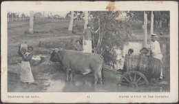 POS-742 CUBA POSTCARD. 1901. BUFFALO EXPO. TRANSPORTE DE AGUAS. WATER SUPPLY IN THE COUNTRY. - Cuba