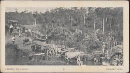 POS-749 CUBA POSTCARD. 1901. BUFFALO EXPO. CARRETAS DE CARGA. SUGAR CANE CART. - Kuba