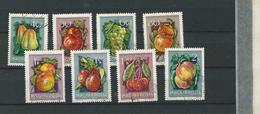 HU - UNGARN FRÜCHTE - FRUITS -1954  - USED  - º  -