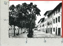 CARTOLINA VG ITALIA - CASTEL SAN NICCOLO (AR) - Strada Casentino - Via Roma - 10 X 15 - ANN. 1961 - Arezzo
