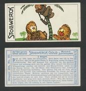 Chocolat STOLLWERCK -  N° 484-3 - Album 12 - Stollwerck