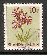 003843 Ruanda Urundi 1953 Flowers 10F FU - Ruanda-Urundi