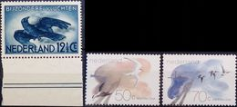 Netherlands, 1982, Birds, MNH
