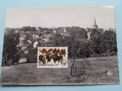 PANORAMA ( Druif En Wijnfeesten ) Anno 29-8-1970 ( Zie Foto ) !! - Overijse