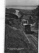 (26) CPSM  Drahtseilbahn Rheineck Walzenhausen   (bon Etat) - AR Appenzell Ausserrhoden
