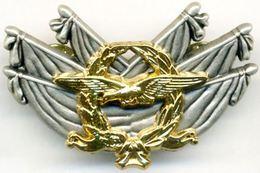 INSIGNE ARMEE DE L'AIR BREVET COMMISSAIRE AIR NIVEAU 2 HOMOLOGUE GS 271 ETAT EXCELLENT - Armée De L'air