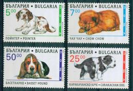 4275 Bulgaria 1997 Fauna Pure-breed Small Dogs ** MNH / Rassehunde - Pointer  Chow-Chow Carakachan Basset Bulgarie - Bulgarien