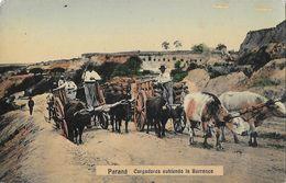 Argentina - Parana - Cargadores Subiendo La Barranca - Carte Colorisée, Non Circulée - Argentina