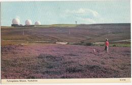 Flyingdales Moors - 3 RADOMES - R.A.F. Base - Yorkshire - (england) - Sterrenkunde