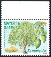 MAYOTTE 2007 - Yv. 205 **   Cote= 2,20 EUR - Manguier Et Ses Mangues  ..Réf.AFA22693 - Ungebraucht