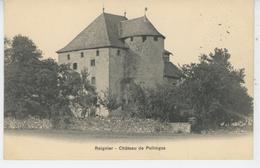 REIGNIER - Château De POLLINGES - Autres Communes