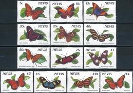 Nevis Butterflies