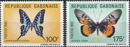 Gabon  Butterflies