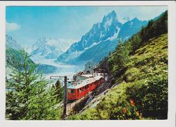FRANCE - 74 CHAMONIX - MONT BLANC - La Gare Du Train Du Montenvers Devant La Mer De Glace Et Les Grandes Jorasses - Chamonix-Mont-Blanc