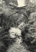 Carte à Identifier: Italie 1957 (Selve, Italia?) - Pont Sur La Rivière - Turismo Foto Série 110 - Cartes Postales