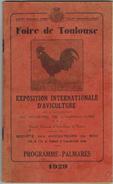 1929 FOIRE De TOULOUSE Exposition Internationale D'Aviculture Midi Oie Caussade Le Lude Volailles Pigeons Canards Lapins - Midi-Pyrénées