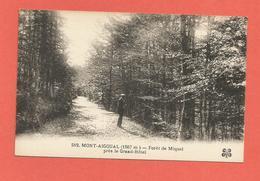 Carte Postal Ancienne Mont-Aigoual Gard Forêt De Miquel Près Le Grand-Hôtel TBE - France