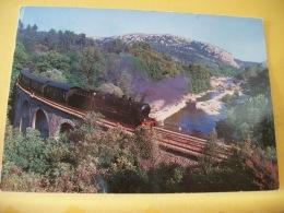 TRAIN 2880 - VUE 2/3 - LE VIADUC DE MESCLADOUS - CHEMIN DE FER TOURISTIQUE D'ANDUZE A ST JEAN DU GARD - LIGNE EXPLOI.... - Trains