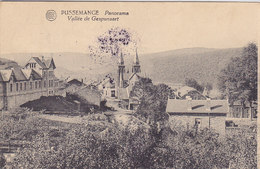 Pussemange - Panorama - Vallée De Gespunsart (Edit. Kayser, Franchise Militaire, 1924) - Vresse-sur-Semois