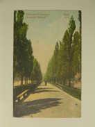 UKR 302 Kiew Boulevard Bibikoff 1910 - Ucraina