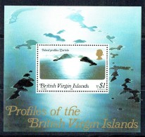 1980  Tortola Island Profile  Souvenir Sheet  ** - Iles Vièrges Britanniques